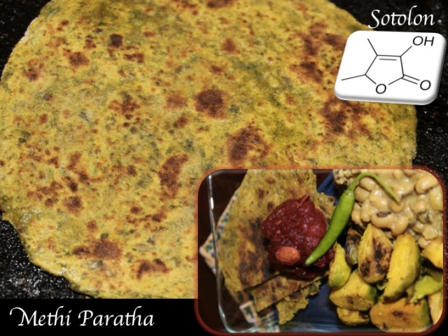 Flat bread with fenugreek leaves (methi paratha), flavored by my favorite furan, sotolan